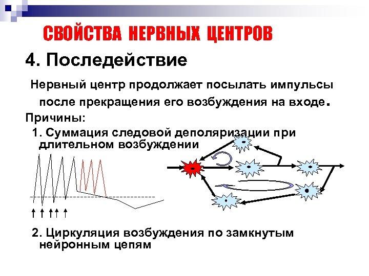 СВОЙСТВА НЕРВНЫХ ЦЕНТРОВ 4. Последействие Нервный центр продолжает посылать импульсы после прекращения его возбуждения