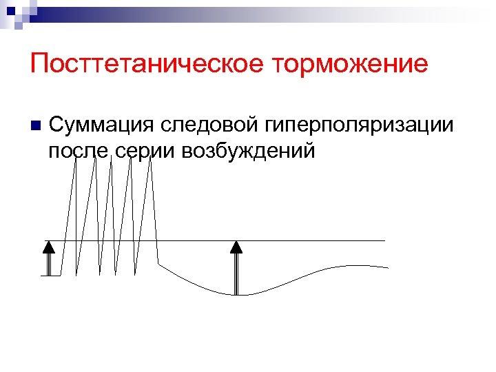 Посттетаническое торможение n Суммация следовой гиперполяризации после серии возбуждений