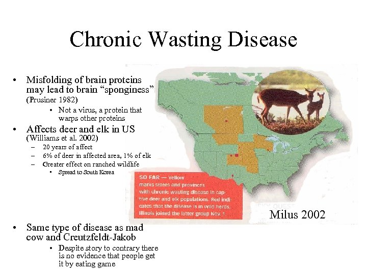 """Chronic Wasting Disease • Misfolding of brain proteins may lead to brain """"sponginess"""" (Prusiner"""