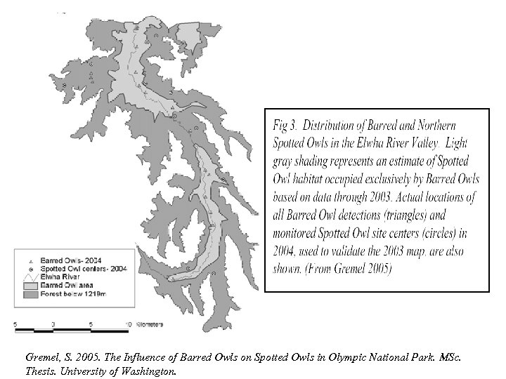 Gremel, S. 2005. The Influence of Barred Owls on Spotted Owls in Olympic National