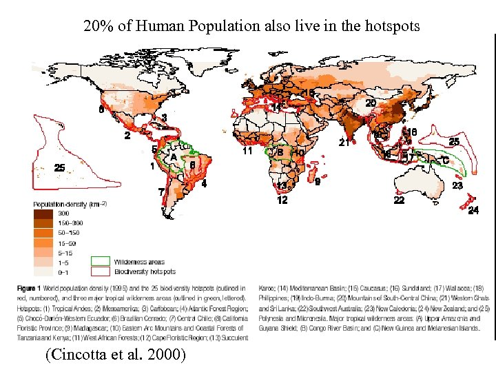 20% of Human Population also live in the hotspots (Cincotta et al. 2000)