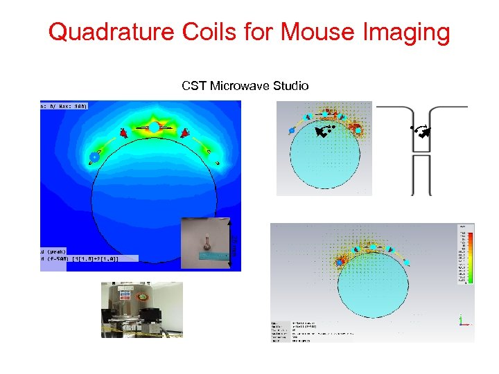 Quadrature Coils for Mouse Imaging CST Microwave Studio 25 mm