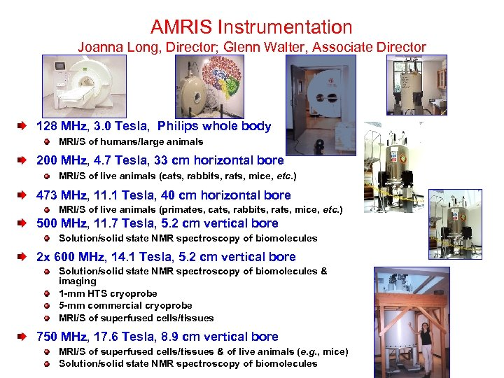 AMRIS Instrumentation Joanna Long, Director; Glenn Walter, Associate Director 128 MHz, 3. 0 Tesla,