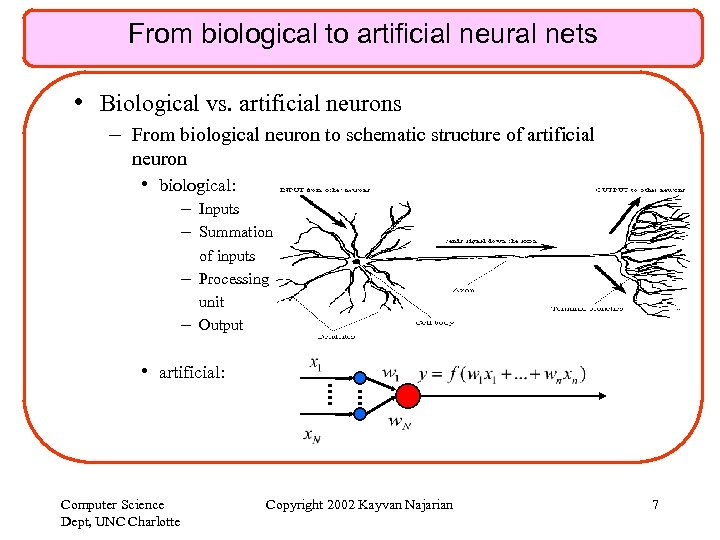 From biological to artificial neural nets • Biological vs. artificial neurons – From biological