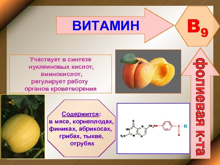 ВИТАМИН Участвует в синтезе нуклеиновых кислот, аминокислот, регулирует работу органов кроветворения Содержится: в мясе,