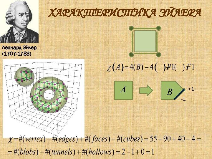 ХАРАКТЕРИСТИКА ЭЙЛЕРА Леонард Эйлер (1707 -1783) +1 -1