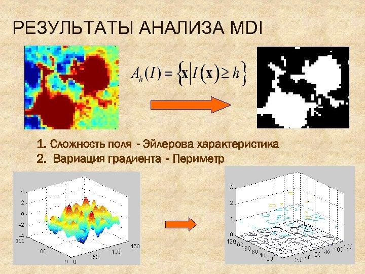 РЕЗУЛЬТАТЫ АНАЛИЗА MDI 1. Сложность поля - Эйлерова характеристика 2. Вариация градиента - Периметр