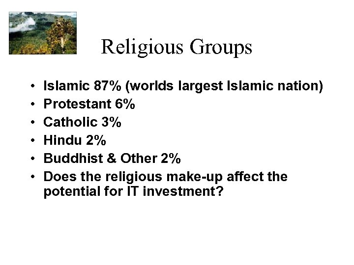 Religious Groups • • • Islamic 87% (worlds largest Islamic nation) Protestant 6% Catholic