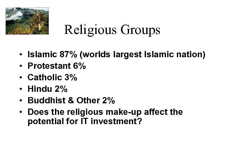 Religious Groups • • • Islamic 87% (worlds largest Islamic nation) Protestant 6% Catholic