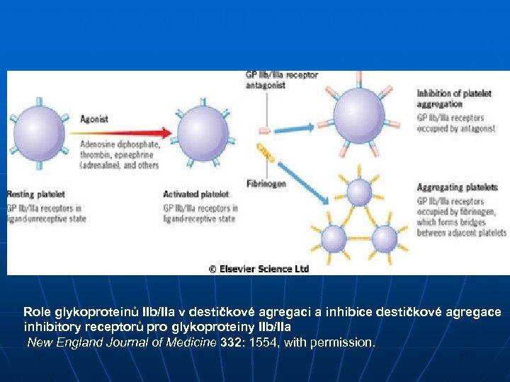 Role glykoproteinů IIb/IIa v destičkové agregaci a inhibice destičkové agregace inhibitory receptorů pro