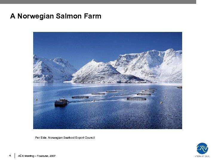 A Norwegian Salmon Farm Per Eide. Norwegian Seafood Export Council 4 ACE Meeting –