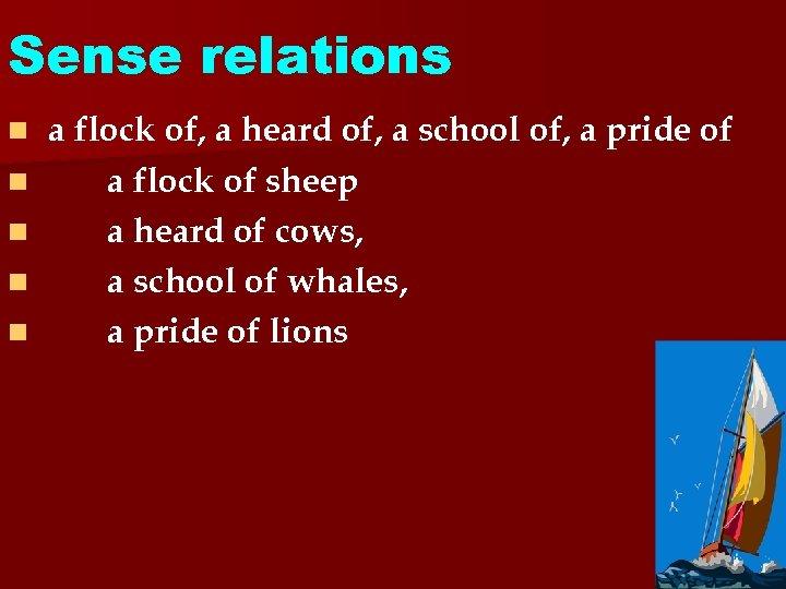 Sense relations n n n a flock of, a heard of, a school of,