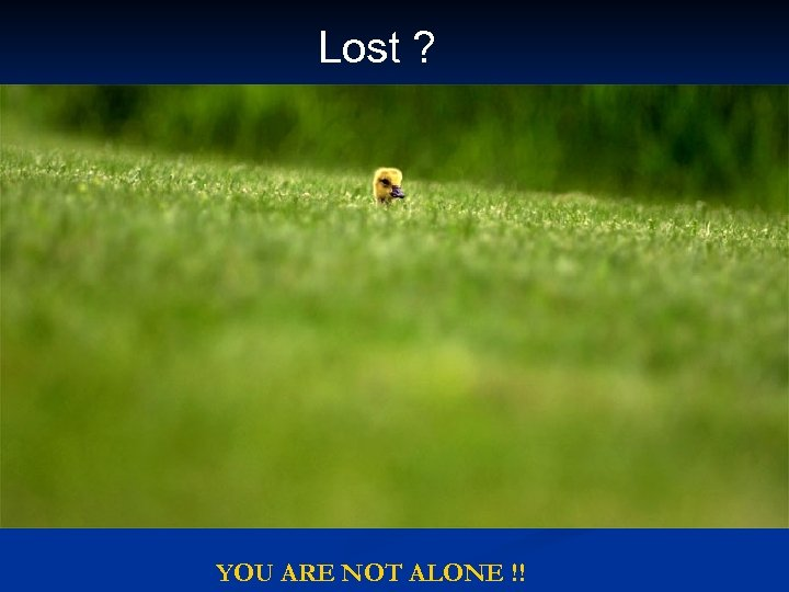Lost ? YOU ARE NOT ALONE !!