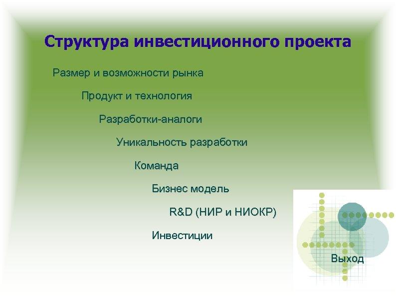 Структура инвестиционного проекта Размер и возможности рынка Продукт и технология Разработки-аналоги Уникальность разработки Команда