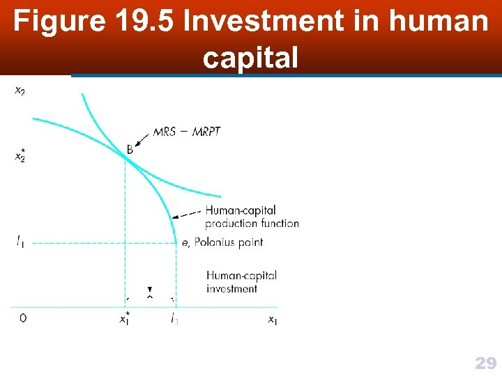 Figure 19. 5 Investment in human capital 29