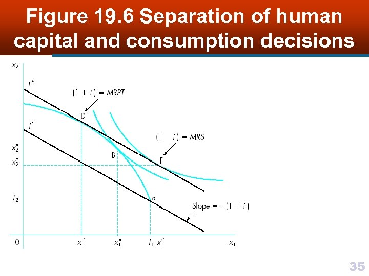 Figure 19. 6 Separation of human capital and consumption decisions 35