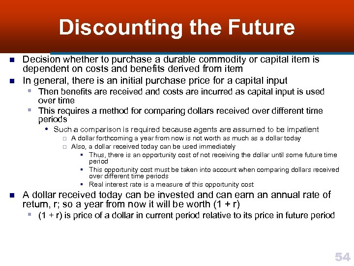 Discounting the Future n n Decision whether to purchase a durable commodity or capital