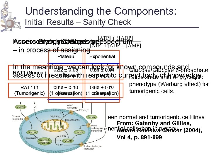 Understanding the Components: Initial Results – Sanity Check Hundreds of compounds per spectrum Assess