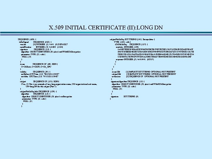 X. 509 INITIAL CERTIFICATE (II): LONG DN SEQUENCE (439) { to. Be. Signed SEQUENCE