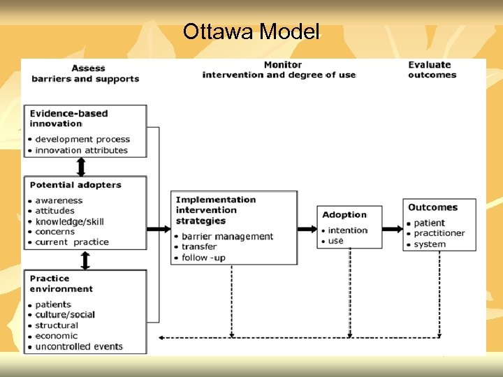 Ottawa Model
