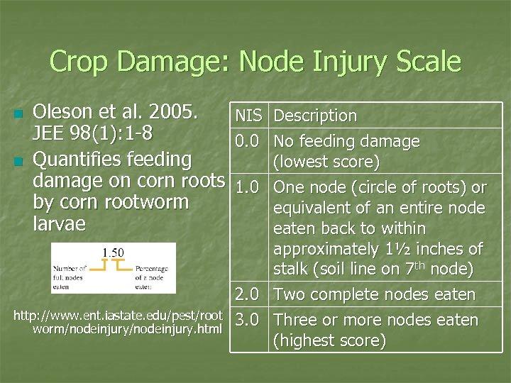 Crop Damage: Node Injury Scale n n Oleson et al. 2005. JEE 98(1): 1