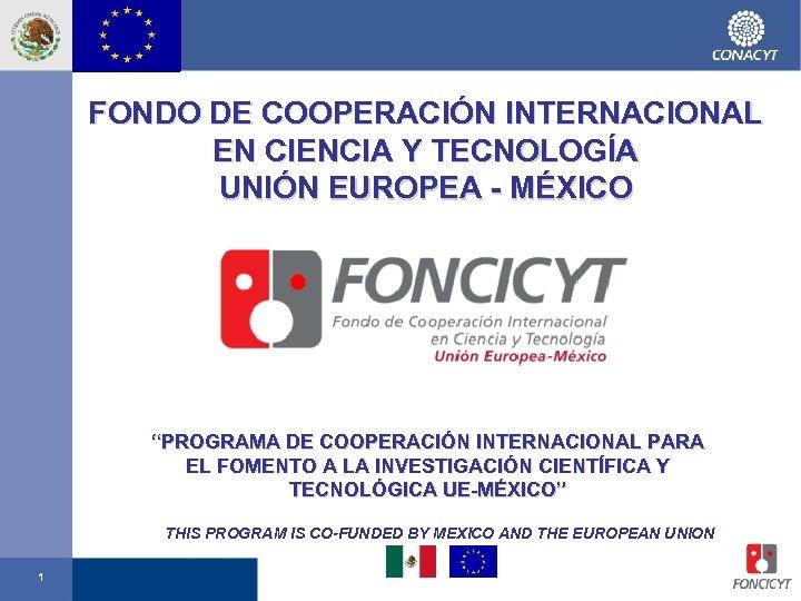 """FONDO DE COOPERACIÓN INTERNACIONAL EN CIENCIA Y TECNOLOGÍA UNIÓN EUROPEA - MÉXICO """"PROGRAMA DE"""