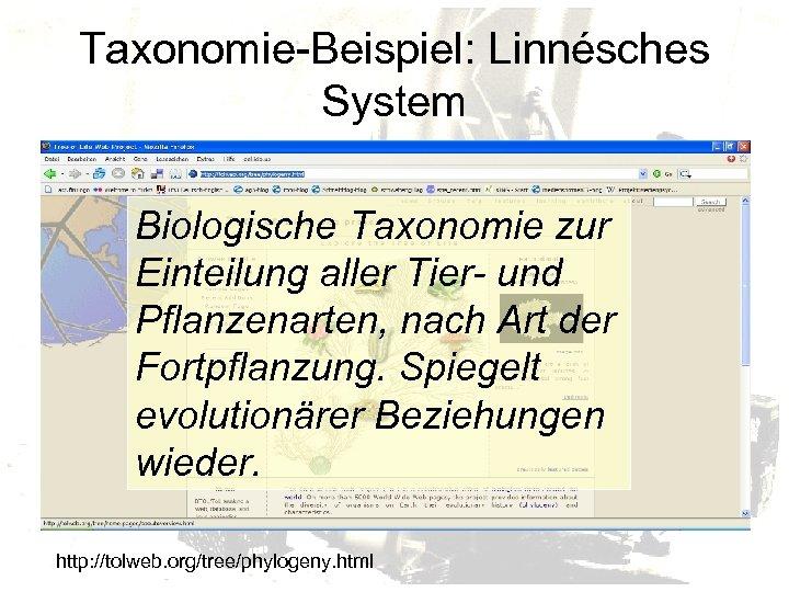 Taxonomie-Beispiel: Linnésches System Biologische Taxonomie zur Einteilung aller Tier- und Pflanzenarten, nach Art der