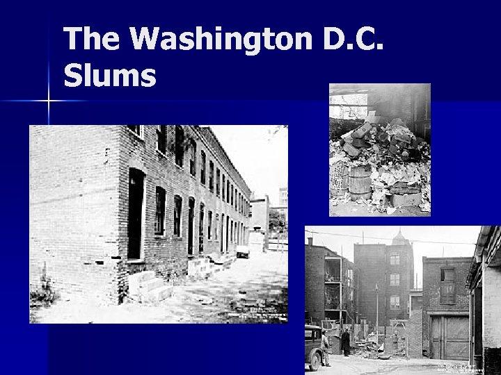 The Washington D. C. Slums
