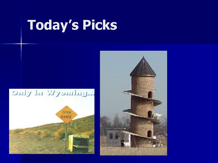 Today's Picks