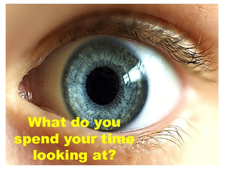 What do you spend your time looking at?