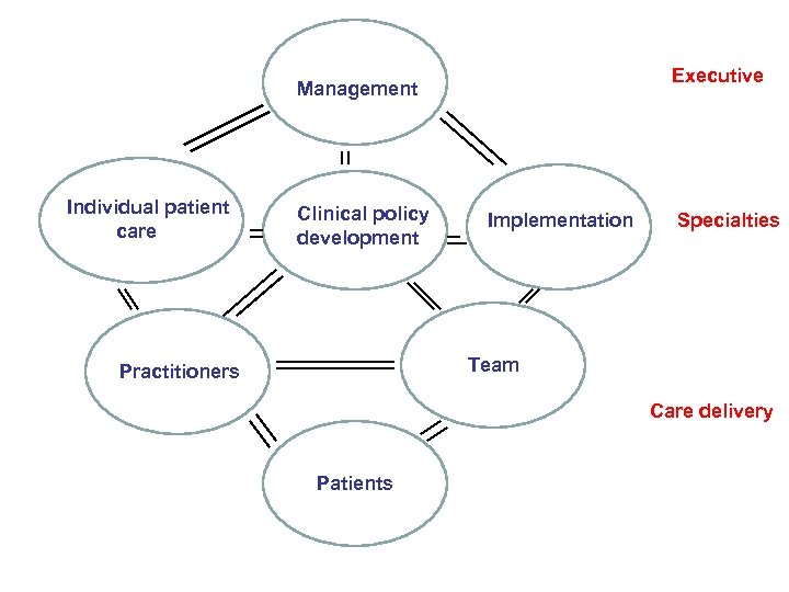 Executive Management Individual patient care Clinical policy development Implementation Specialties Team Practitioners Care delivery