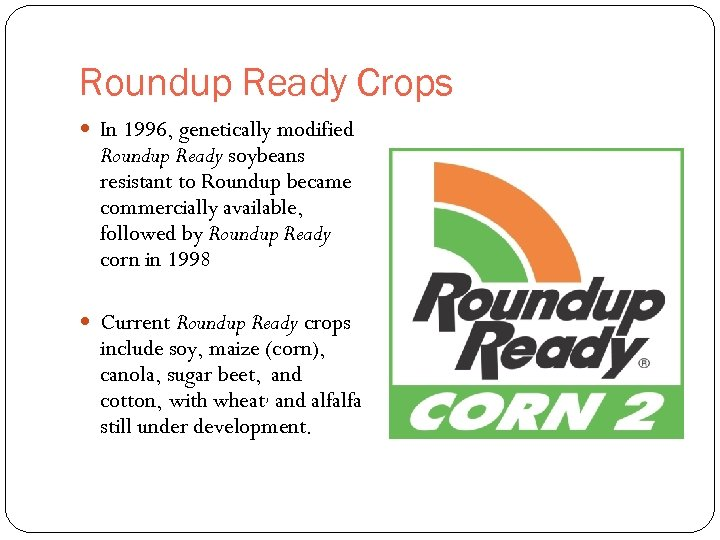 Roundup Ready Crops In 1996, genetically modified Roundup Ready soybeans resistant to Roundup became