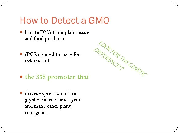 How to Detect a GMO Isolate DNA from plant tissue and food products. drives