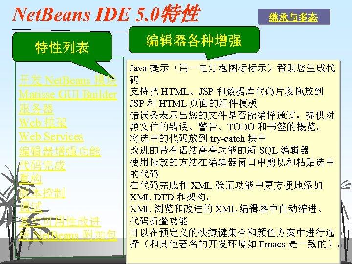 Net. Beans IDE 5. 0特性 特性列表 开发 Net. Beans 模块 Matisse GUI Builder 服务器