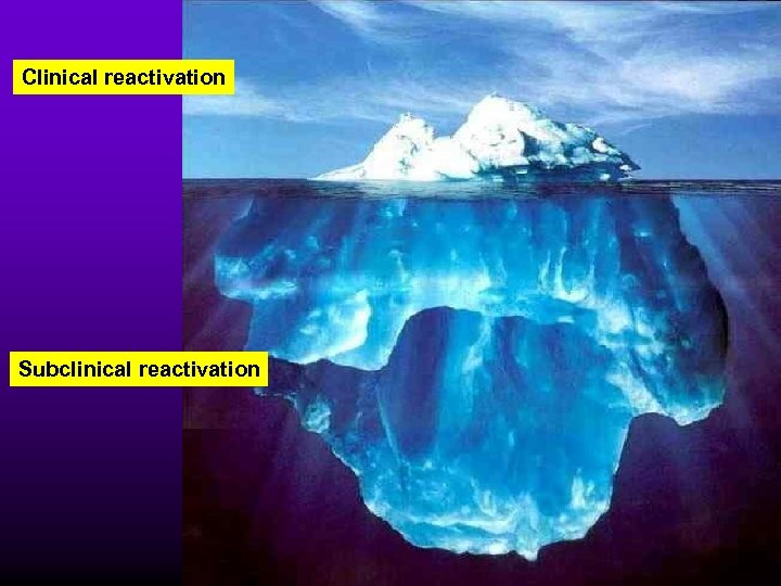 Clinical reactivation Subclinical reactivation
