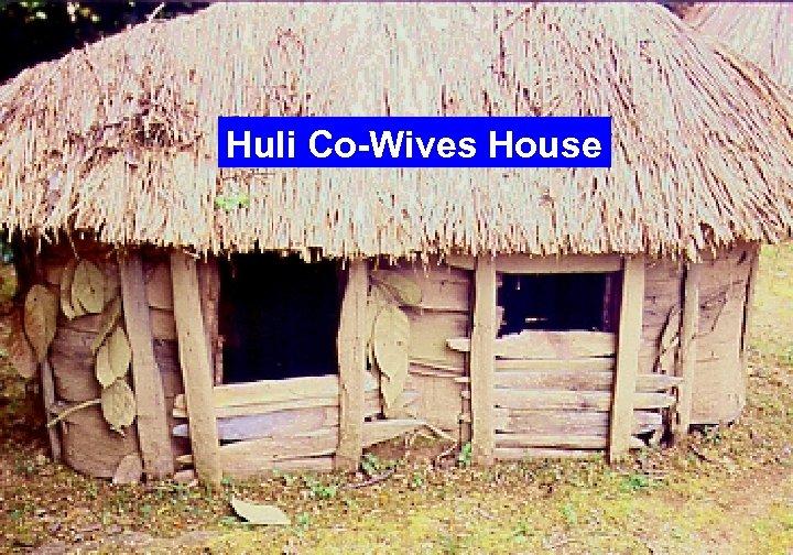 Huli Co-Wives House