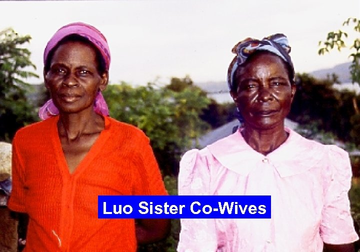 Luo Sister Co-Wives