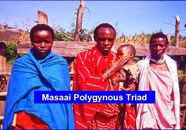 Masaai Polygynous Triad