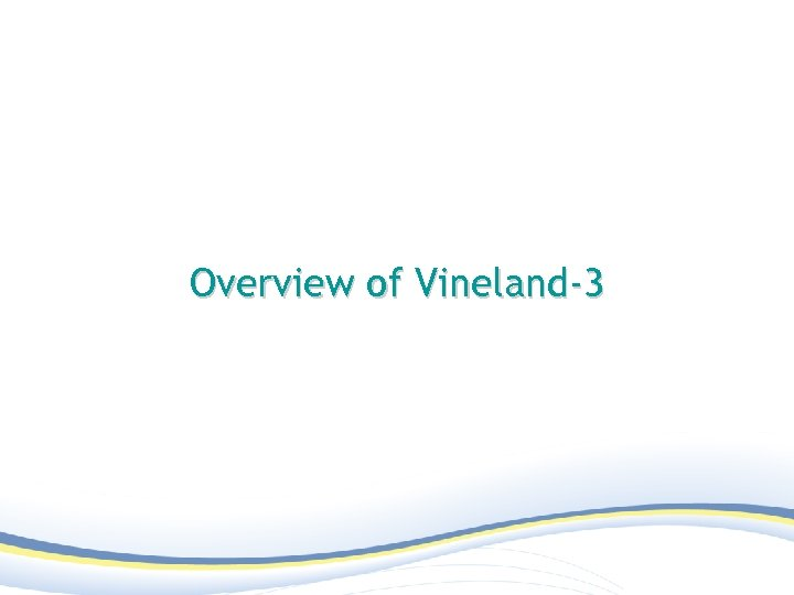 Overview of Vineland-3