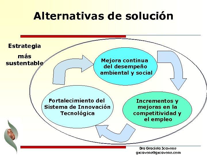 Alternativas de solución Estrategia más sustentable Mejora continua del desempeño ambiental y social Fortalecimiento