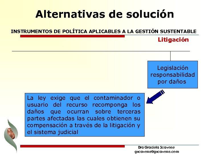Alternativas de solución INSTRUMENTOS DE POLÍTICA APLICABLES A LA GESTIÓN SUSTENTABLE Litigación Legislación responsabilidad