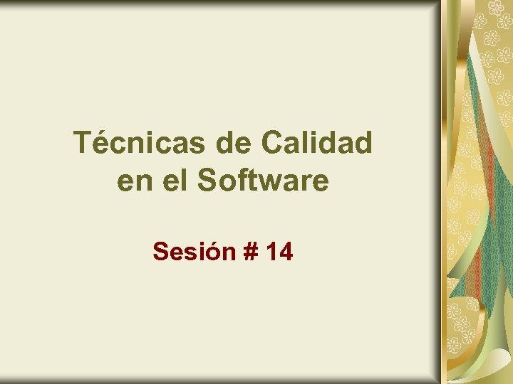 Técnicas de Calidad en el Software Sesión # 14