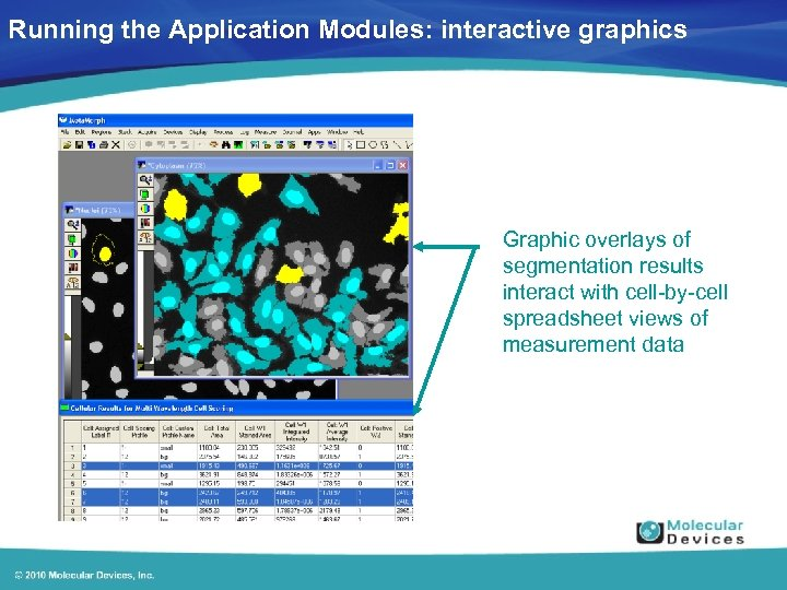 Running the Application Modules: interactive graphics Graphic overlays of segmentation results interact with cell-by-cell