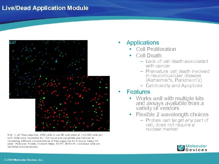 Live/Dead Application Module • Applications • Cell Proliferation • Cell Death – Lack of