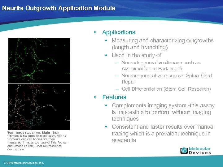 Neurite Outgrowth Application Module • Applications • Measuring and characterizing outgrowths (length and branching)