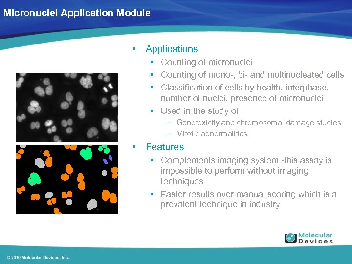 Micronuclei Application Module • Applications • Counting of micronuclei • Counting of mono-, bi-