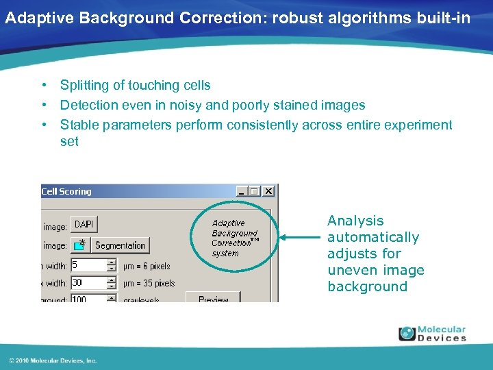 Adaptive Background Correction: robust algorithms built-in • Splitting of touching cells • Detection even