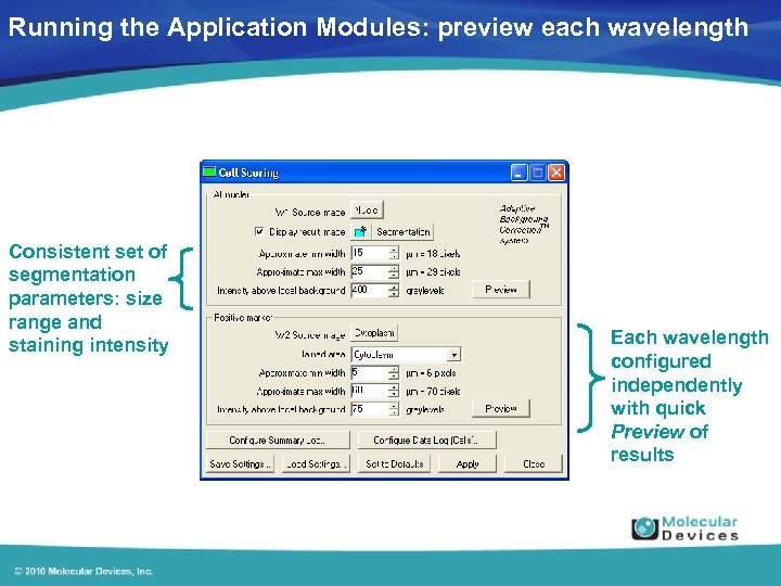 Running the Application Modules: preview each wavelength Consistent set of segmentation parameters: size range