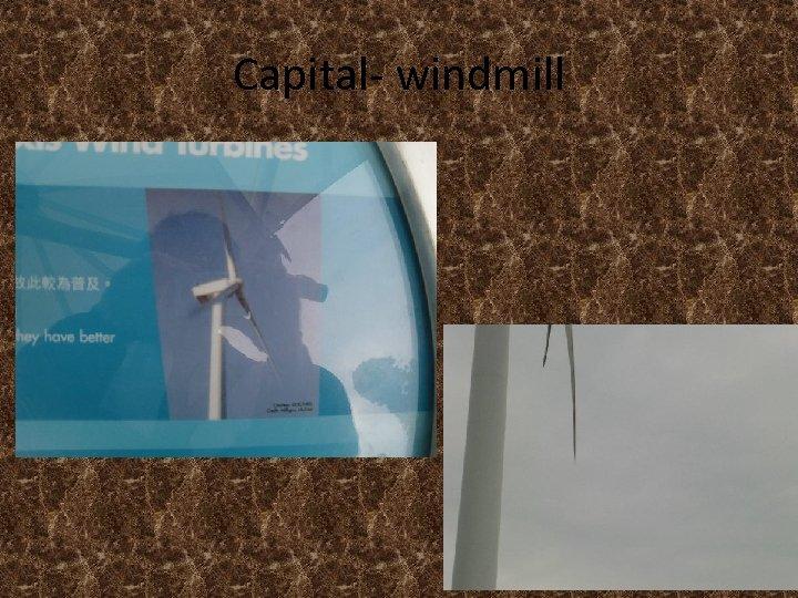 Capital- windmill