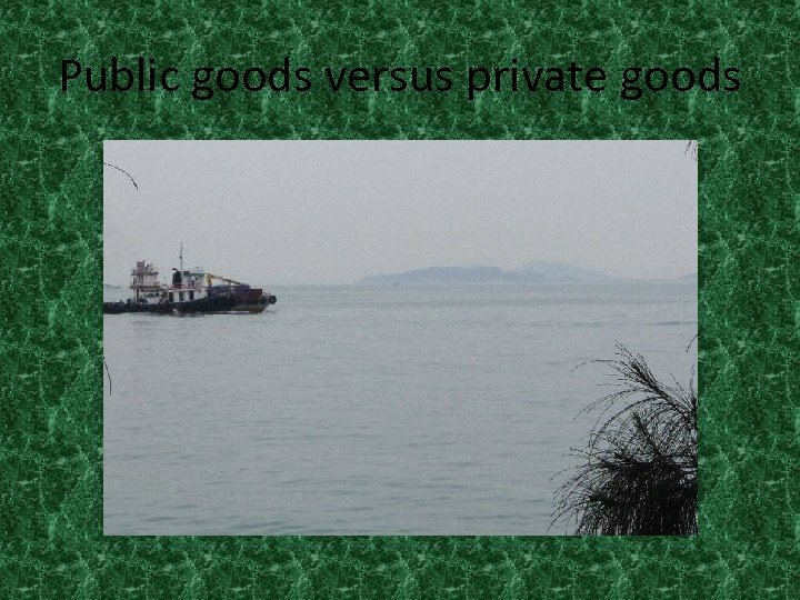 Public goods versus private goods